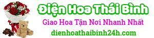 Điện hoa Thái Bình – LH: 0966.020.388, đặt hoa online, giao hoa tại nhà, shop hoa tươi, cửa hàng hoa tại Thái Bình